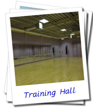 Our Training Hall, Beginners and Experienced Club Swingers are all welcome